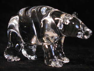 zoo_bear8_320.jpg
